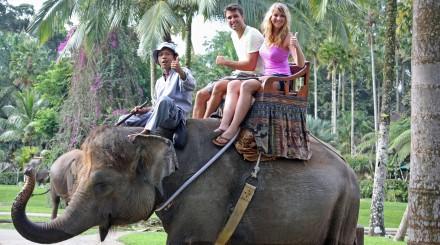 Promenade à dos d'éléphant et rafting