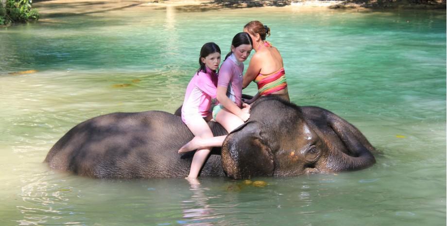 Journée au village des éléphants