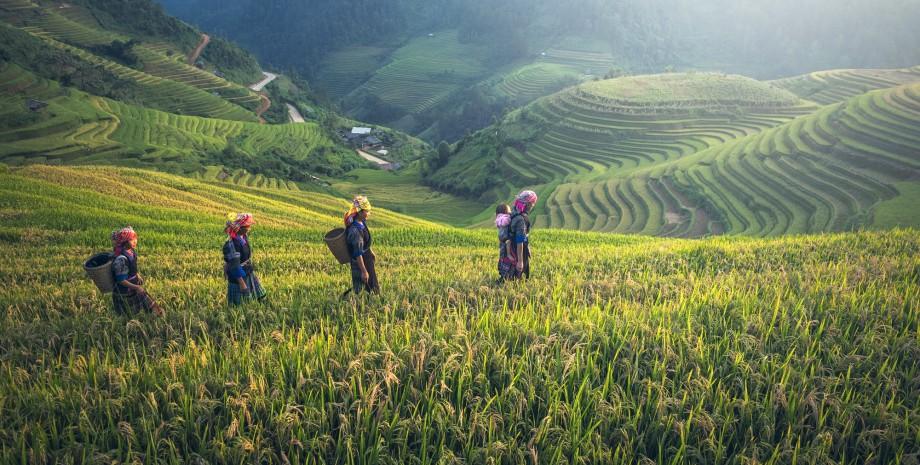 Randonnée rizières et tribus oubliées