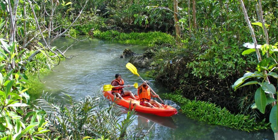 Balade nature en canoë