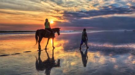 Balade en cheval en bord de mer