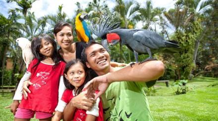 Parc aux oiseaux, papillons et reptiles