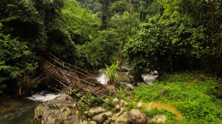 Une journée randonnée à Vang Vieng
