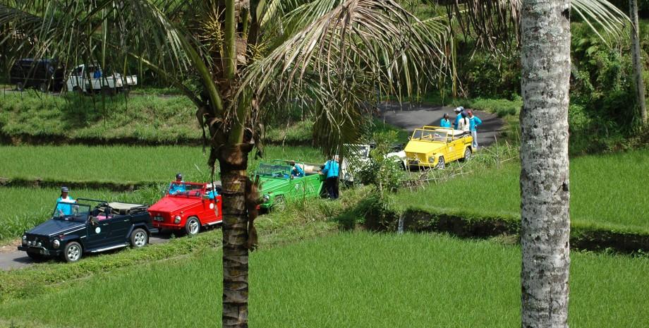 Est Bali en Volkswagen