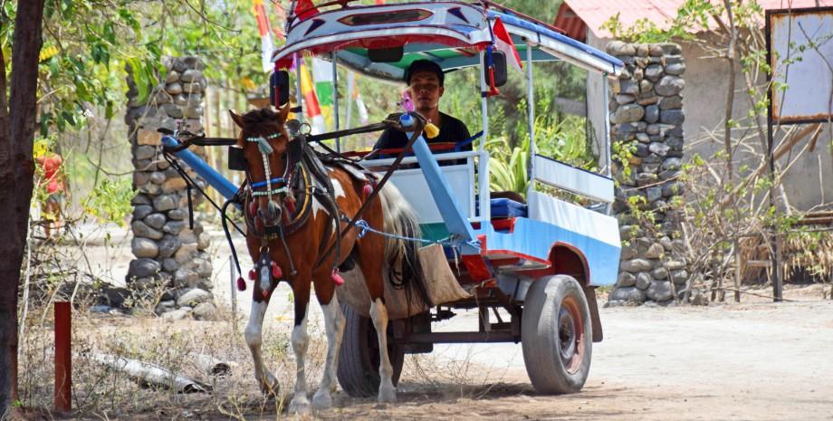 Lombok en court métrage