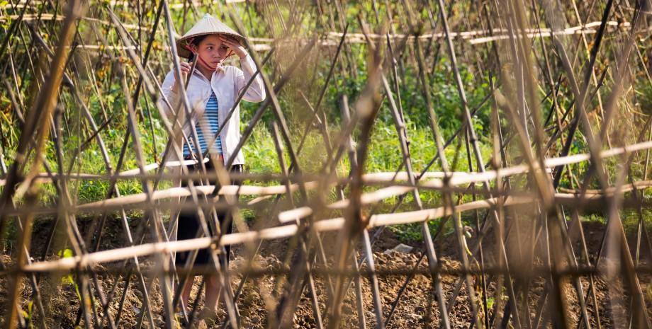 Journée à la vietnamienne
