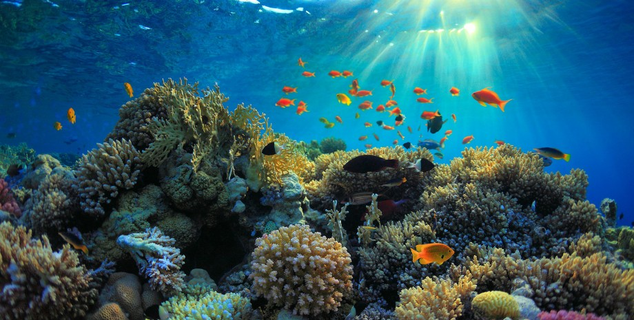 Les îles de Nha Trang